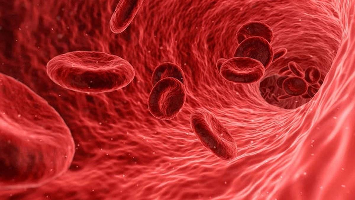 Повышаем гемоглобин ребенку в домашних условиях