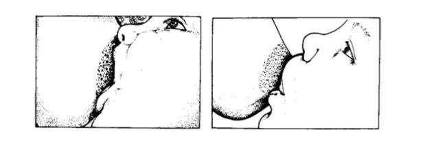 Как кормить грудью