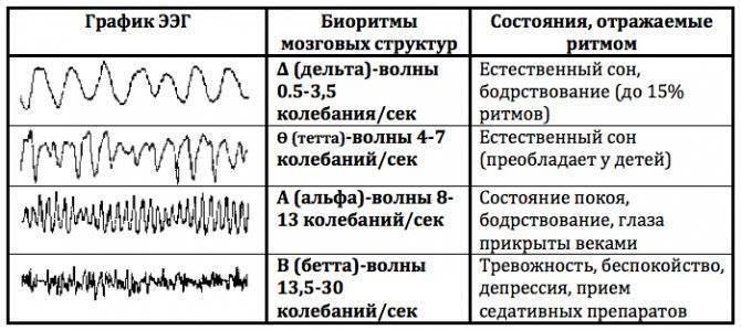 Ээг головного мозга ребенку: что показывает, что означает эпилептиформная активность (эпиактивность) без приступов, расшифровка -  нормы и причины нарушений, как делают электроэнцефалограмму