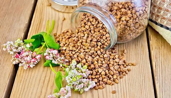 Аллергия на гречку: причины, симптомы и способы лечения патологии