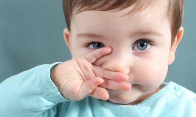 Как вытащить сухие козюльки из носа,если они далеко? - запись пользователя anya (kisyuk) в сообществе здоровье новорожденных в категории насморк и прочие заболевания носа - babyblog.ru