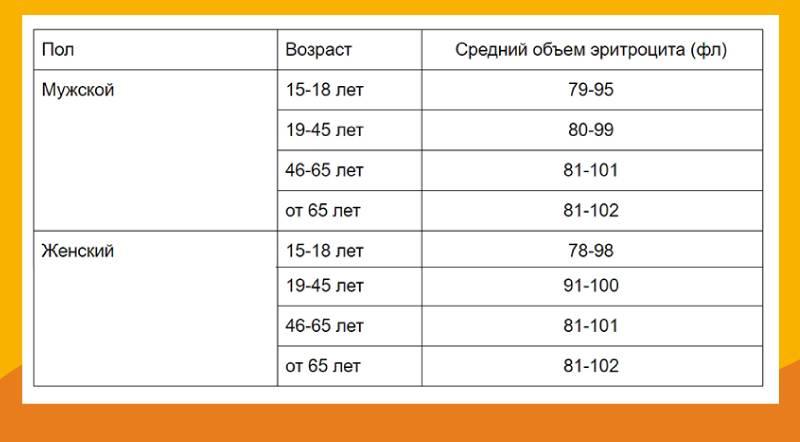 Анализ биохимия из головы новорожденных??!!? страшно.... - кровь на биохимию у новорожденного - запись пользователя смурфетта (baby-bu) в сообществе здоровье новорожденных в категории анализы - babyblog.ru