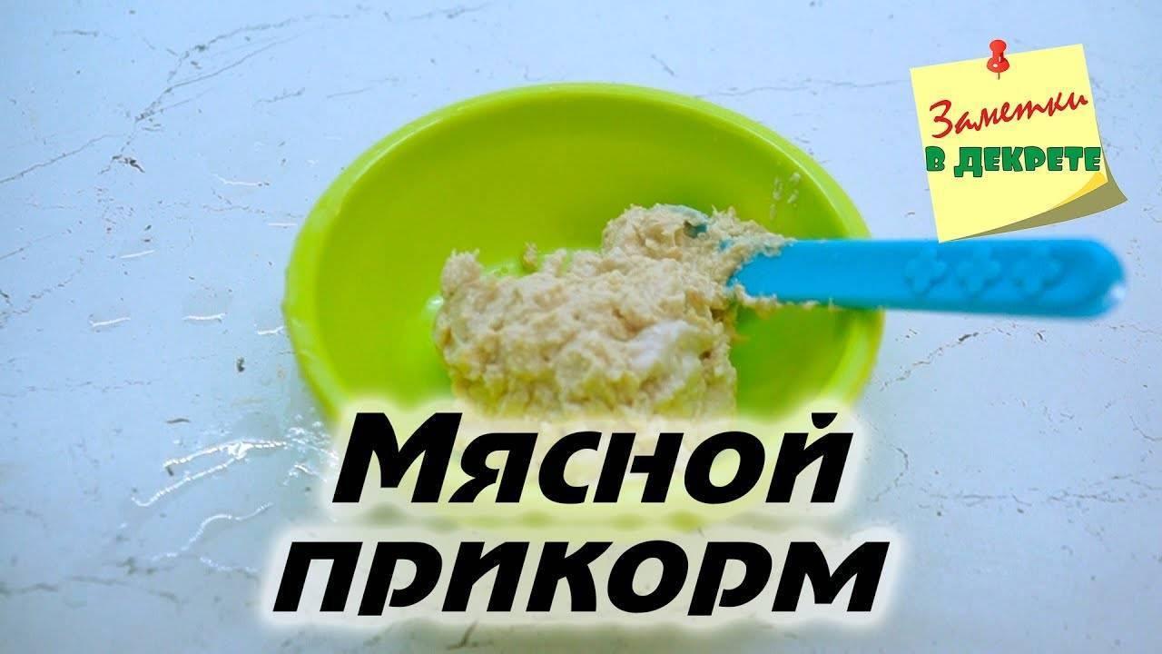 Первый прикорм: первый прикорм.
