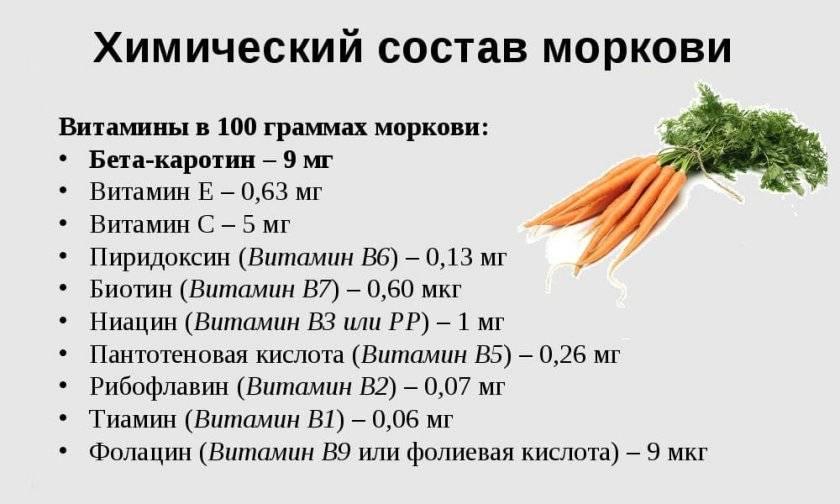 Голодная смерть не грозит: список продуктов, которые разрешены при грудном вскармливании