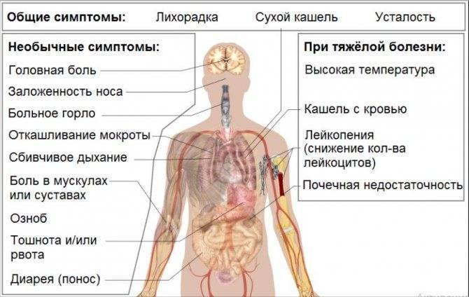 Боли в животе у ребенка: что делать, причины симптомы, лечение, признаки
