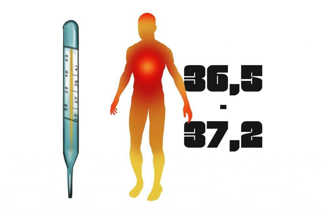 Низкая температура тела, причины, что делать?