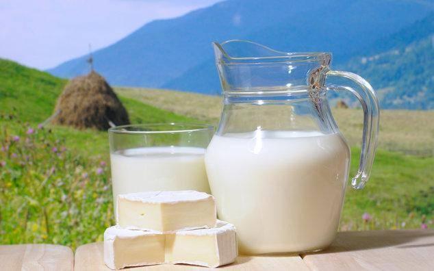 С какого возраста можно давать козье молоко для грудничка: полезные свойства и аллергенность продукта