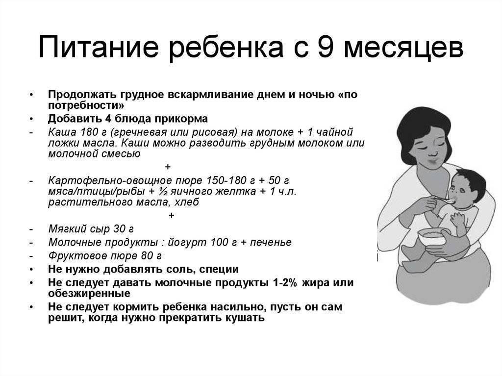 Меню ребенка в 10 месяцев: питание и рацион на грудном и искусственном вскармливании