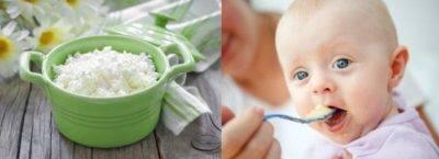 Вводим желток в прикорм ребенку правильно
