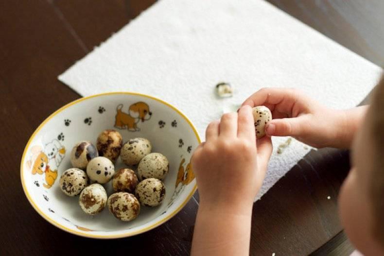 Перепелиные яйца — польза и опасность для детей