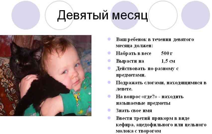 Развитие ребенка в 9 месяцев: что должен уметь, первый лепет, навыки и умения, рост и вес - календарь развития ребенка