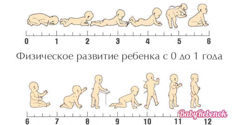 Развитие ребенка в полтора года и десятый скачок роста