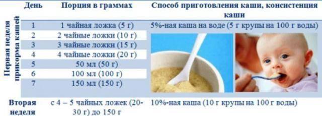 Первый прикорм: что, когда, сколько?