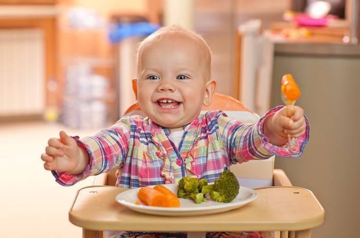 Нужен совет!!!!!!!! ребенок отказывается есть овощи и мясо!!!!!!! - годовалый ребенок не ест мясо - запись пользователя ирина (snezulka) в дневнике - babyblog.ru