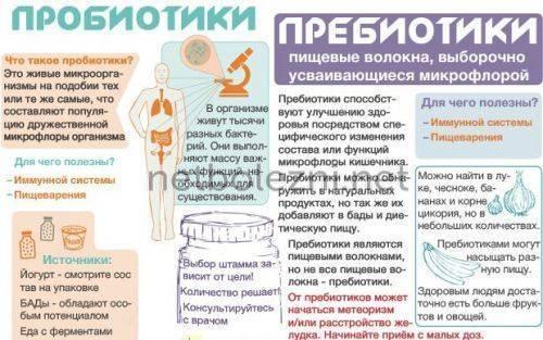 Что дать ребенку после курса антибиотиков от дисбактериоза?? - после антибиотиков что пропить ребенку - запись пользователя маргарита (ritylia) в сообществе детские болезни от года до трех в категории медикаменты для ребенка - babyblog.ru