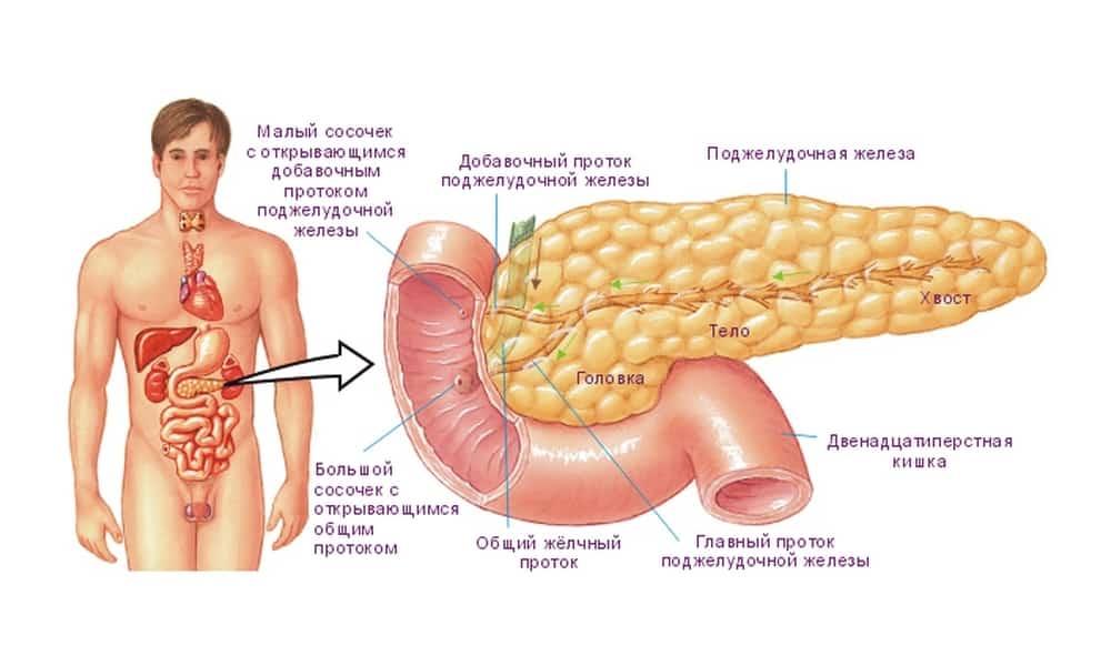 Воспаление поджелудочной железы симптомы дети