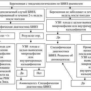 Расшифровка копрограммы кала у взрослых и детей