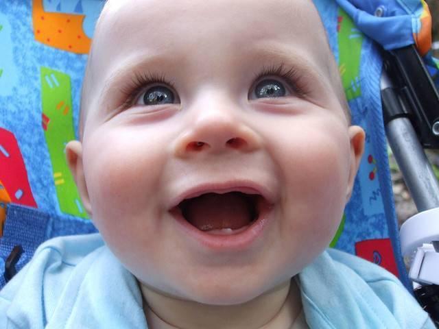 Сроки прорезывания зубов у детей: когда и сколько?