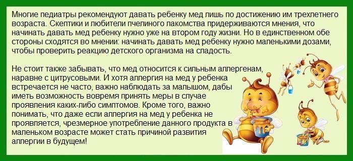 Со скольких месяцев можно давать печень ребенку: в каком возрасте давать грудничку печень говяжью, свиную, кролика, ребенку до года, годовалому