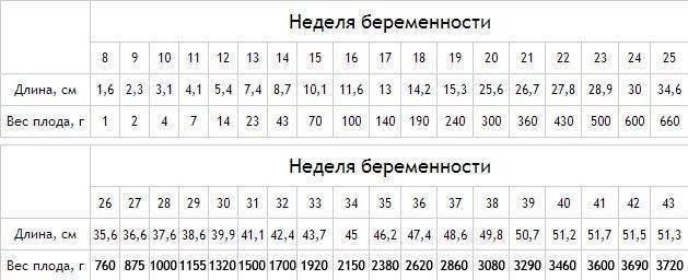 Наконец нашла информативные таблички о развитии плода. пользуйтесь девочки ;) - запись пользователя женя (id1356999) в дневнике - babyblog.ru