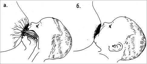 Как правильно прикладывать новорожденного для кормления