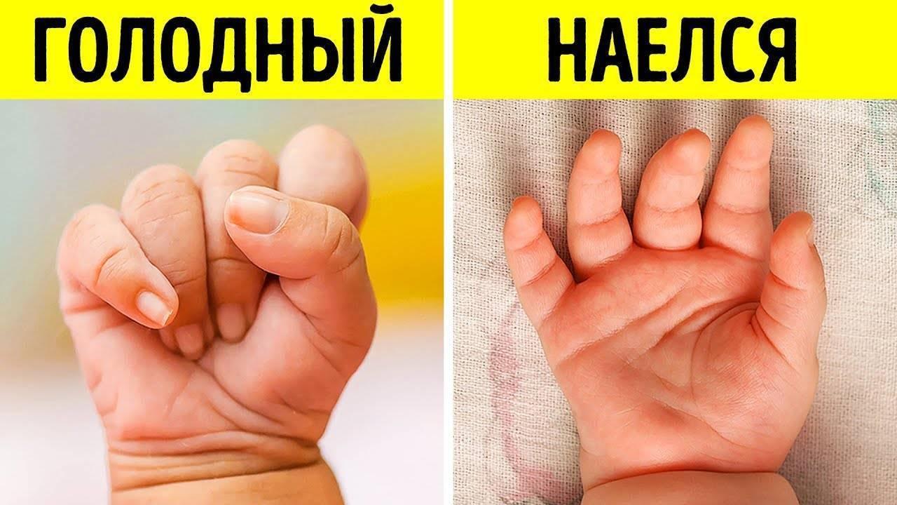 Как понять когда малыш наелся на гв? - как понять наедается ли новорожденный грудным молоком - запись пользователя виктория (viktoriauk) в сообществе грудное вскармливание в категории поведение ребенка - babyblog.ru