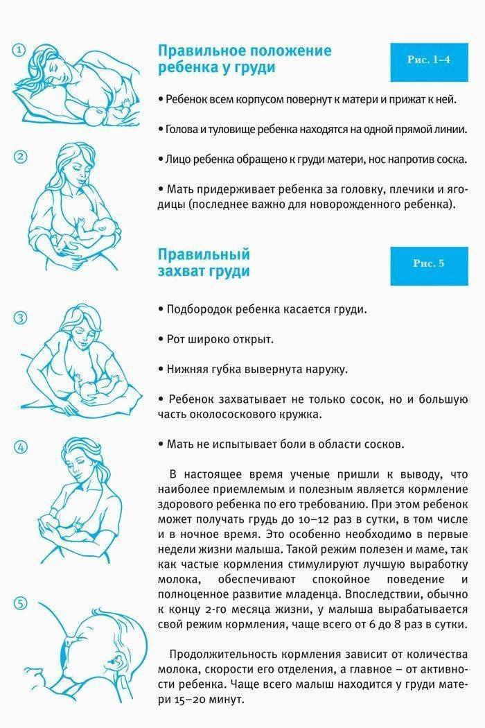 Как прикладывать к груди ребенка правильно – техника, видео