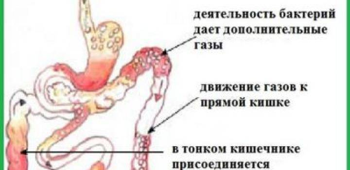 Постоянные пуки с водичкой - новорожденный пукает водой - запись пользователя надя (id1706199) в сообществе здоровье новорожденных в категории стул новорожденного - babyblog.ru